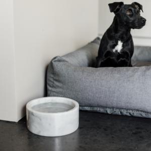 Kentucky Dogwear | Marmor skåle, Hvid