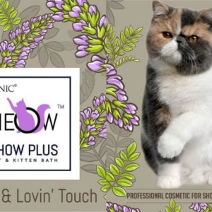 True Iconic – MEOW Show Plus Bath Shampoo