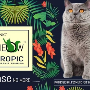 True Iconic – MEOW Tropic Degrease Shampoo