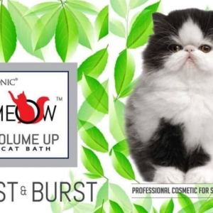 True Iconic – MEOW Volume Up Cat Bath Shampoo