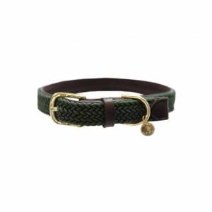 Kentucky Dogwear | Flettet halsbånd, Grøn