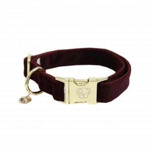 Kentucky Dogwear | Corduroy halsbånd – Bordeaux