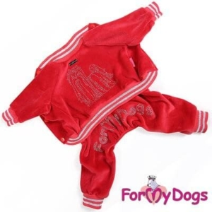 ForMyDogs Suit | York – Unisex Str. 10